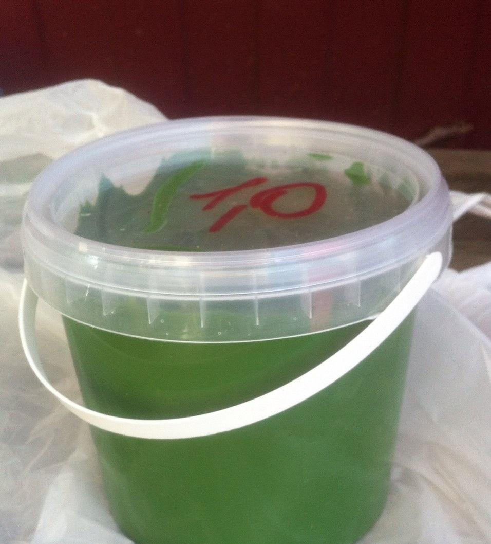 Гелькоут зеленого цвета