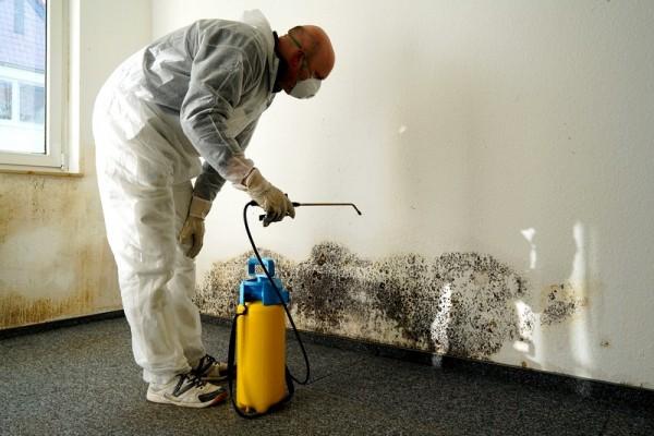Badkamer Schimmel Verwijderen : Hoe zwarte schimmel in de badkamer schoon te maken