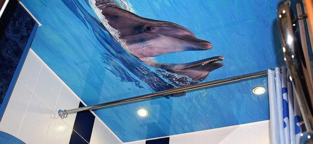 Натяжной потолок с фотопечатью. Изображение дельфинов
